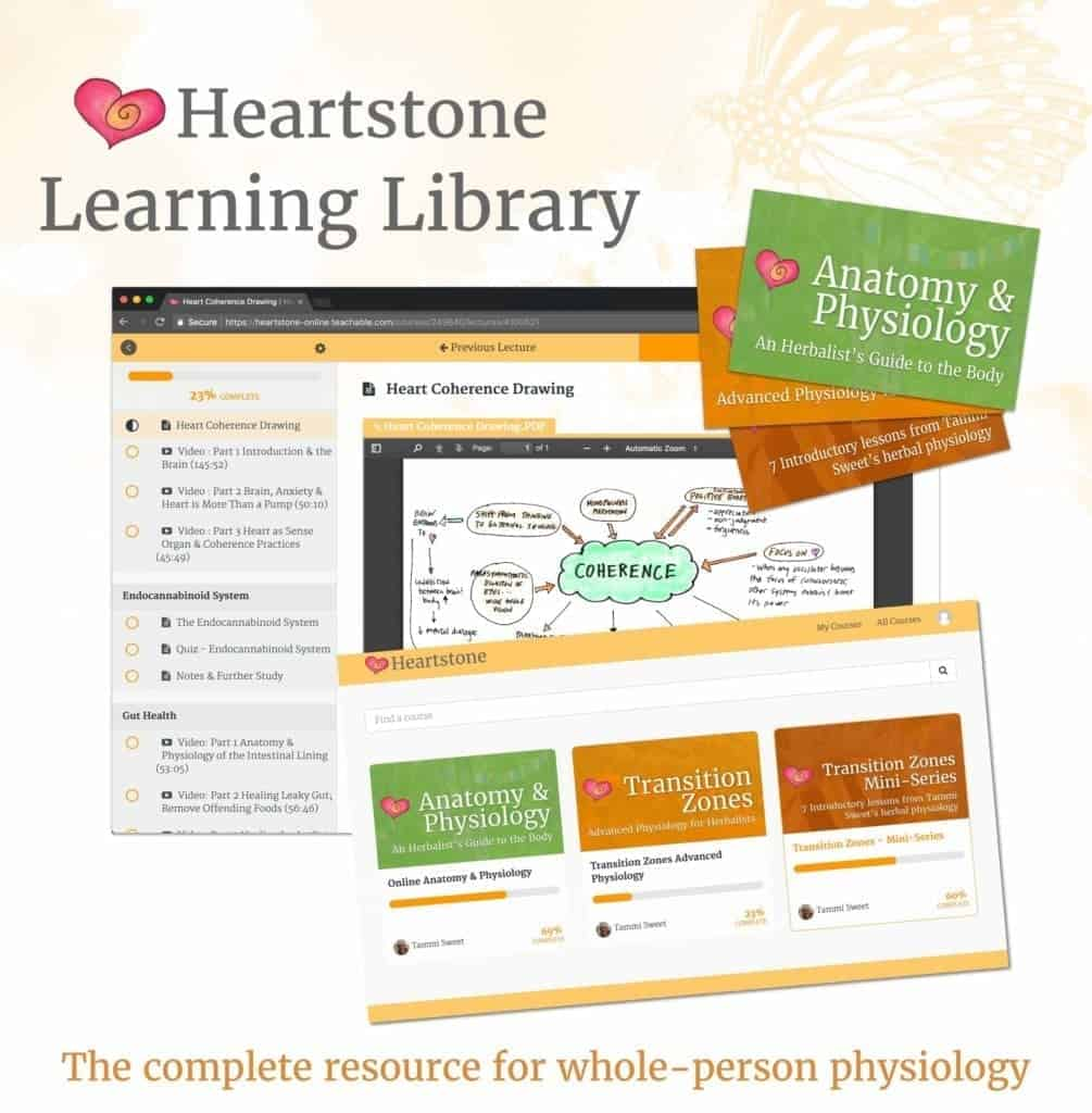 Heartstone Online has over 2,000 students enrolled in either free or paid programs, all managed by Maple.